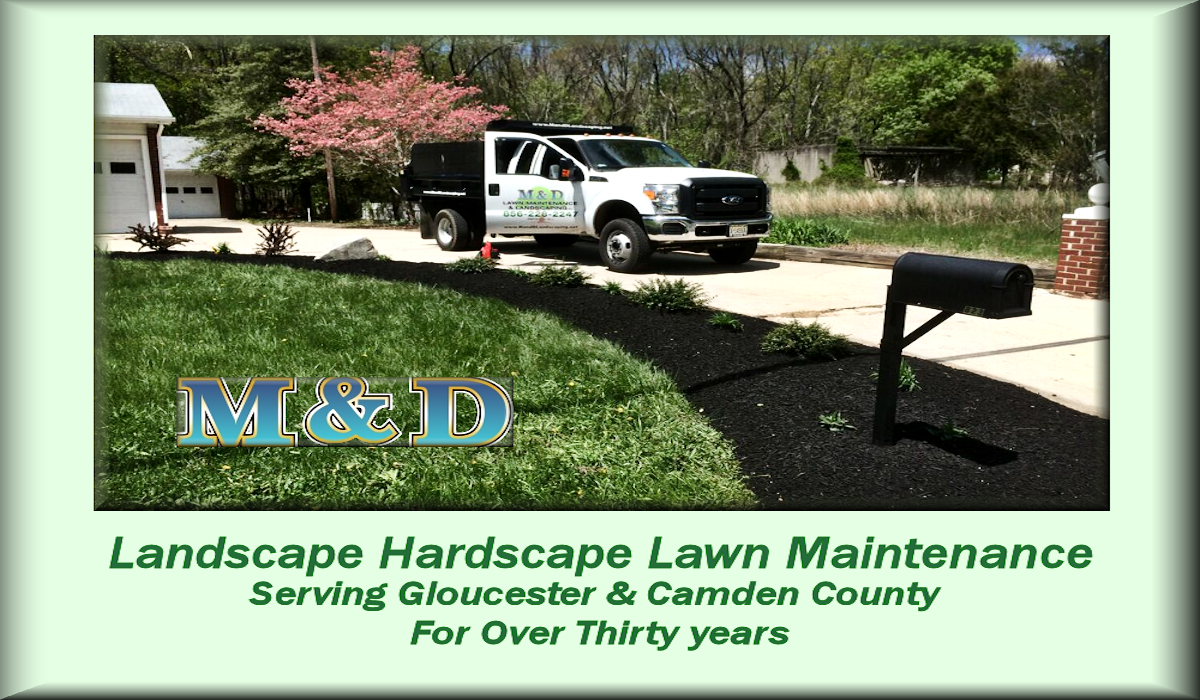 M&D Lawn Maintenance & Landscaping, Inc.Deptford, NJ 08096 ~ 856-228-2247